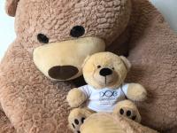 Bear37L