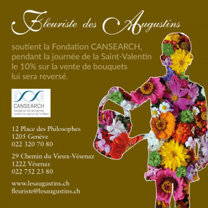 st valentin cansearch 2017